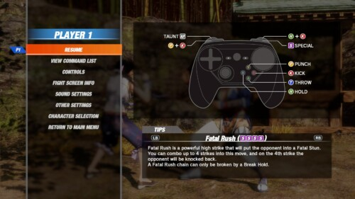 Pause Screen screenshot of Dead or Alive 6 video game interface.