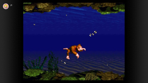donkey-kong-country-aquatic
