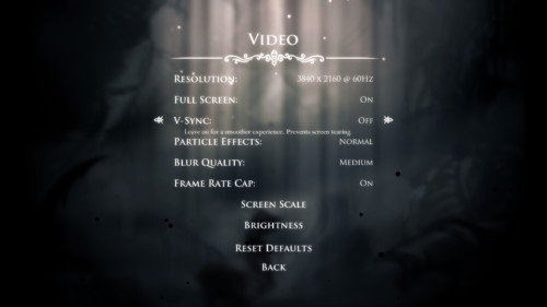 Video screenshot of Hollow Knight video game interface.