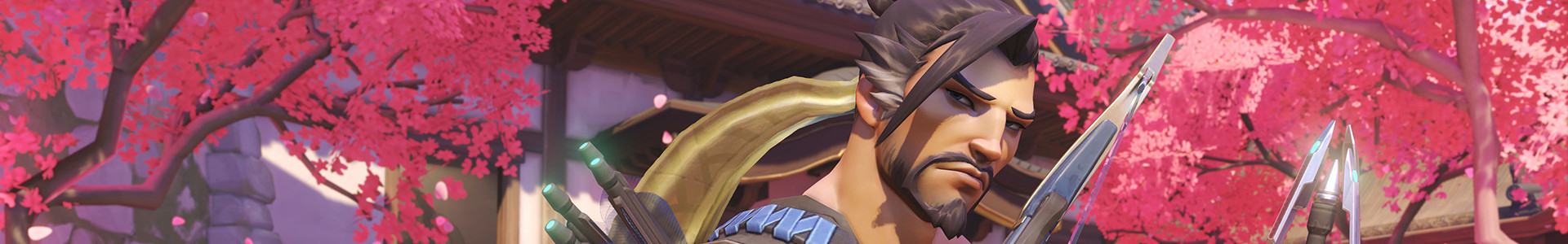Banner media of Overwatch video game.