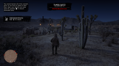 HUD screenshot of Red Dead Redemption 2 video game interface.