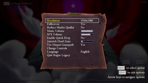rogue-legacy-options
