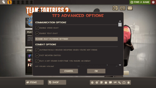 Advanced options screenshot of Team Fortress 2 video game interface.