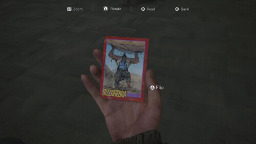 Collectible screenshot of The Last of Us Part II video game interface.