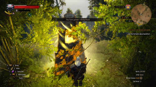 Ability point gained screenshot of The Witcher 3: Wild Hunt video game interface.
