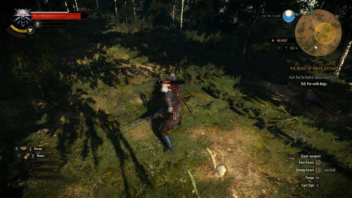 Attack screenshot of The Witcher 3: Wild Hunt video game interface.