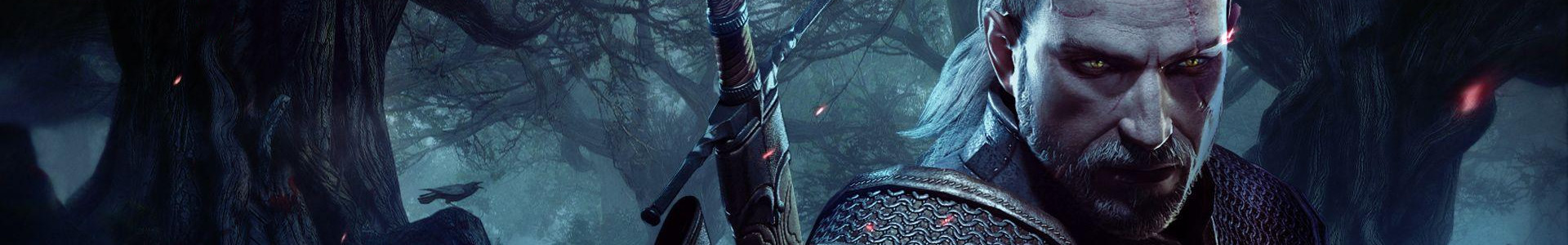 Banner media of The Witcher 3: Wild Hunt video game.
