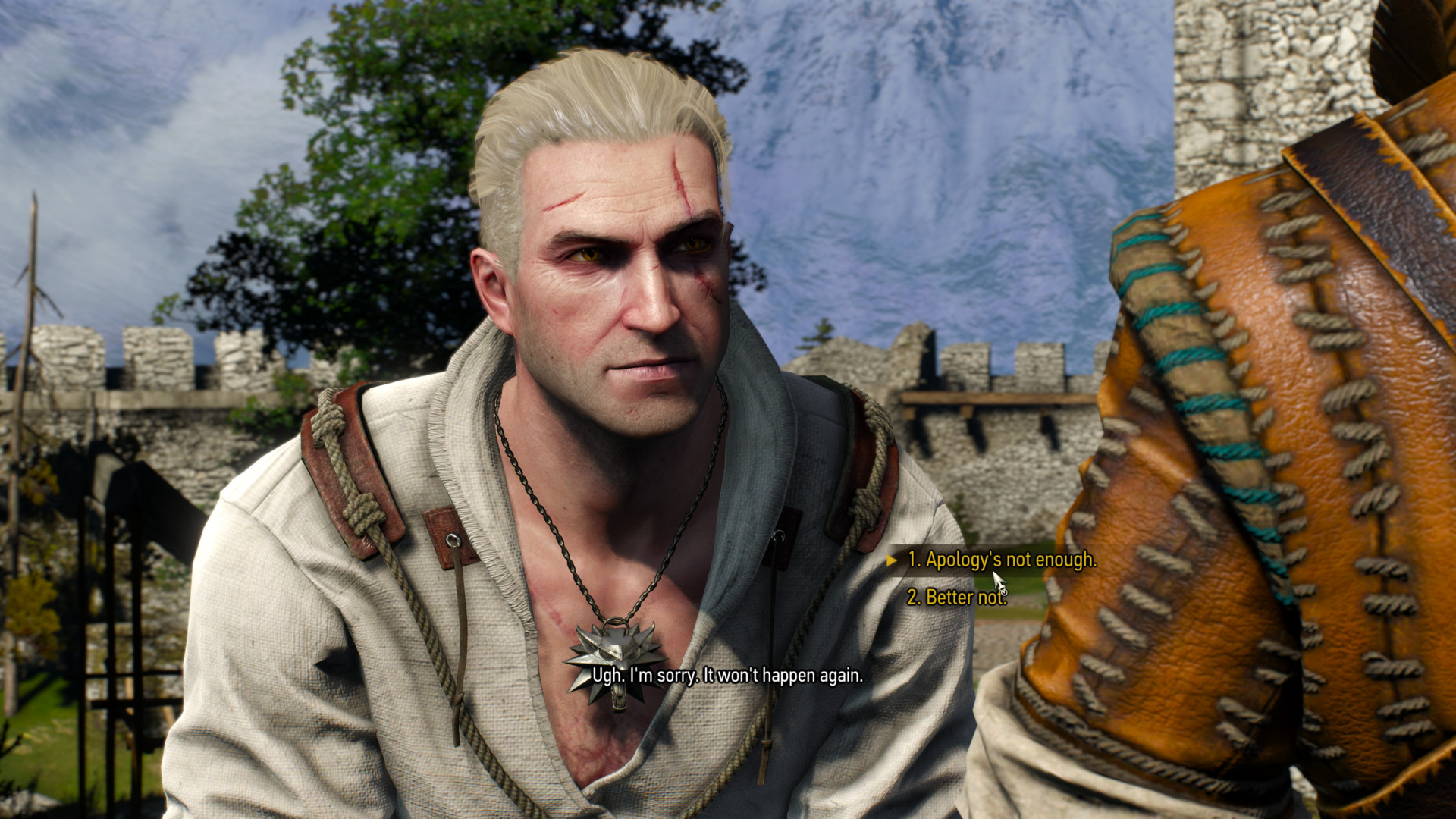 Dialogue screenshot of The Witcher 3: Wild Hunt video game interface.