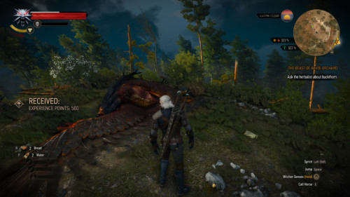 Experience received screenshot of The Witcher 3: Wild Hunt video game interface.