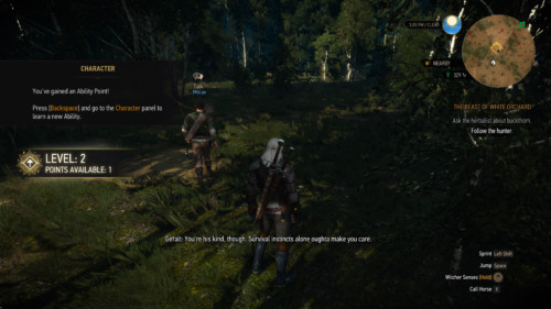 Level up screenshot of The Witcher 3: Wild Hunt video game interface.