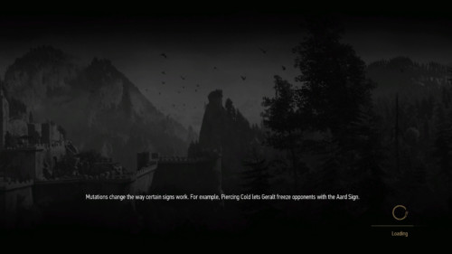 Loading screenshot of The Witcher 3: Wild Hunt video game interface.
