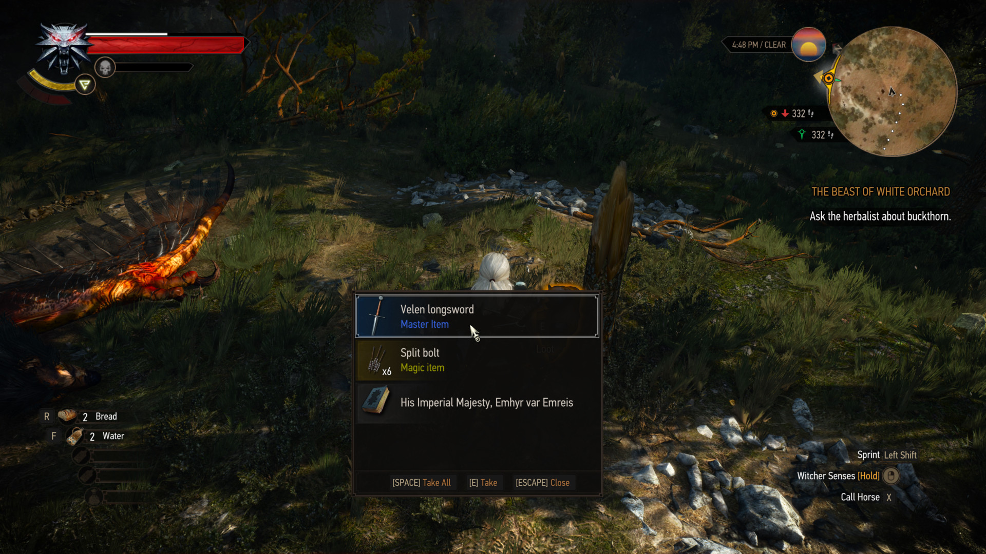 Loot screenshot of The Witcher 3: Wild Hunt video game interface.