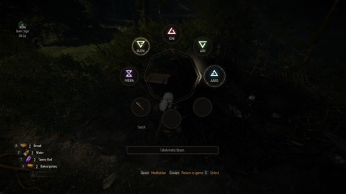 Spell menu screenshot of The Witcher 3: Wild Hunt video game interface.