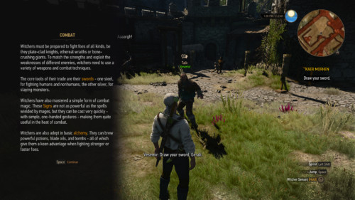 Tip screenshot of The Witcher 3: Wild Hunt video game interface.