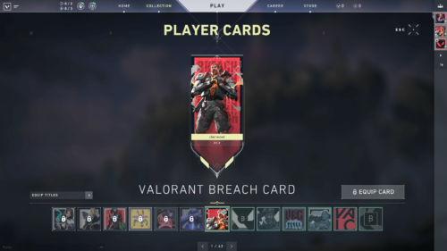 Player cards screenshot of Valorant video game interface.