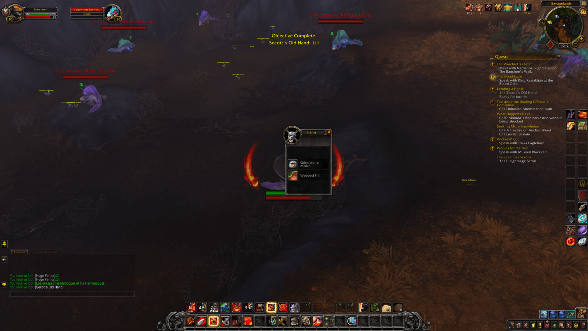 Items loot screenshot of World of Warcraft video game interface.